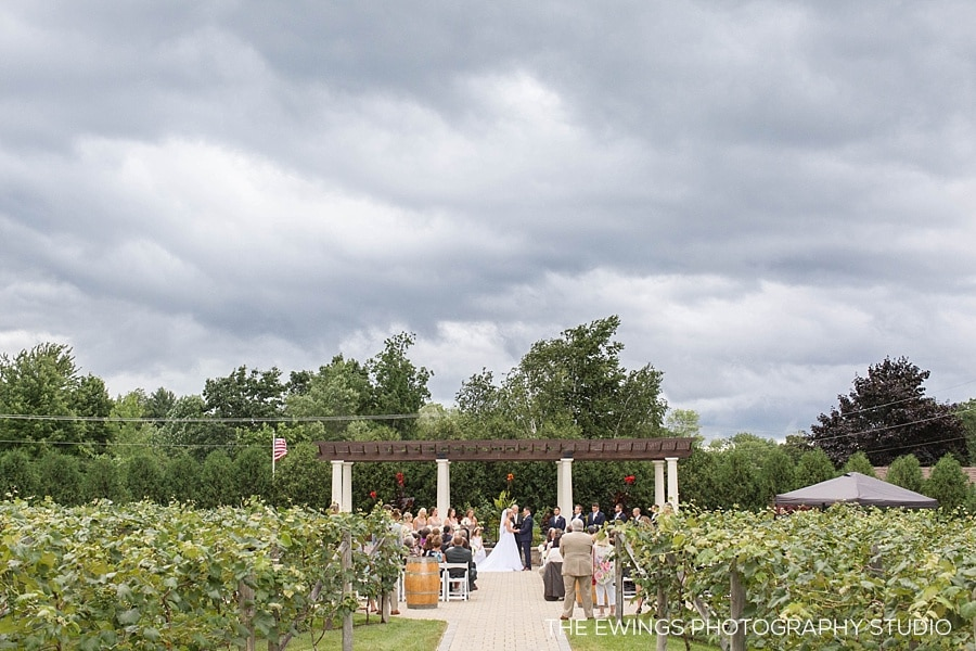 Caitlin + Mike's Birch Wood Vineyards Wedding