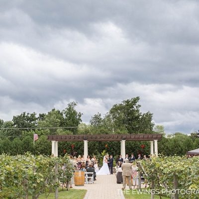 birch wood vineyard wedding new hampshire winery wedding photography
